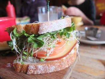 380_Colophon_Cafe_Sandwich_3