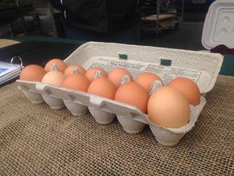 Misty Meadows Eggs